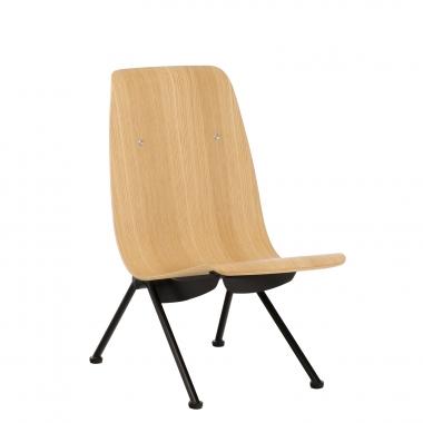 Tony stoel