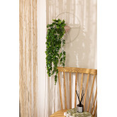 Wandplanter Fredd, miniatuur afbeelding 1