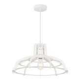 Phylum Lamp