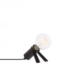 Crawl Lamp